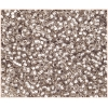 Seedbead 10/0 Silver Lined Light Grey Loose - Solgel